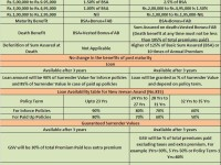LIC's new plans 2014-New Jeevan Anand (No.815)