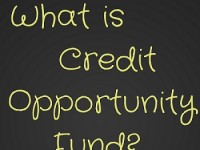 What are Credit Opportunities Funds?