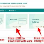 download EPF Passbook and UAN Card online instantly