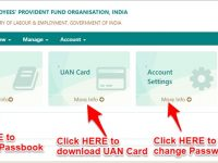 How to download EPF Passbook and UAN Card online instantly?