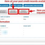 CIBIL Credit Report Online