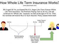 Aegon Life iTerm Forever Whole Life Term Insurance