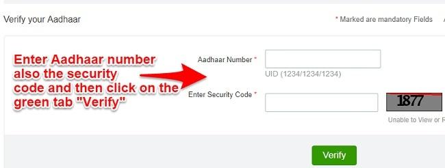 verify Aadhaar status online