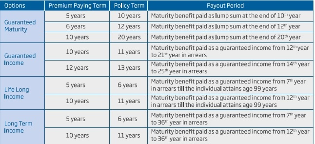 HDFC Life Sanchay Plus Benefit Options